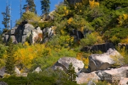 Fall colors in Desolation Wilderness
